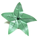CB superior origami calyx with five sepals