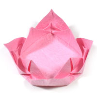 easy lotus flower