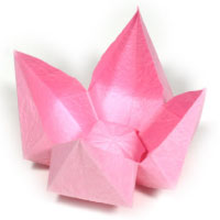 simple origami lotus flower