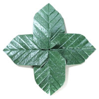 Quadruple Origami Leaf III