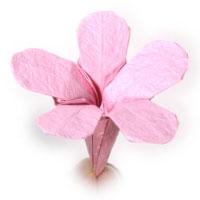 How to make origami phlox origami phlox flower mightylinksfo