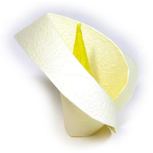 21th Picture Of Origami Calla Lily
