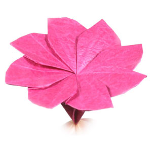 How to make an origami clematis flower page 1 origami clematis flower mightylinksfo