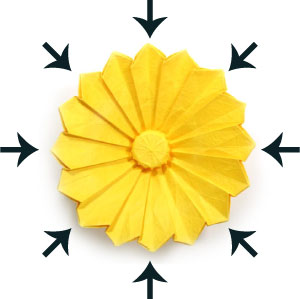 29th Picture Of Origami Daisy Flower III
