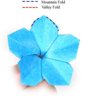 How to make an origami forget me not flower page 15 28th picture of origami forget me not flower ccuart Image collections