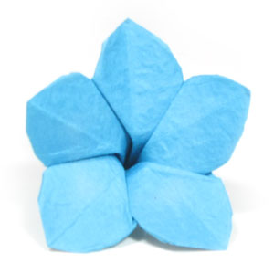How to make an origami forget me not flower page 16 30th picture of origami forget me not flower ccuart Image collections