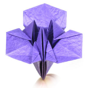 How to make origami paper flowers simple origami iris mightylinksfo