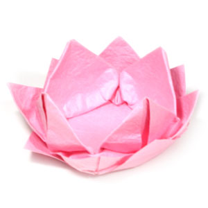 Easy Origami Lotus Flower Tutorial - DIY - Paper Kawaii - YouTube | 300x300