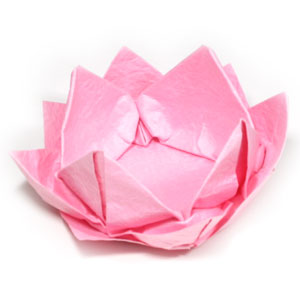 How to make a new origami lotus flower page 26 49th picture of new origami lotus flower mightylinksfo