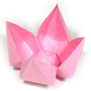 How to make origami flower simple lotus mightylinksfo