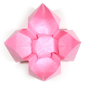 How To Make A Simple Origami Lotus Flower Page 8