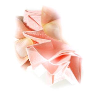 Origami Kawasaki Rose Calyx