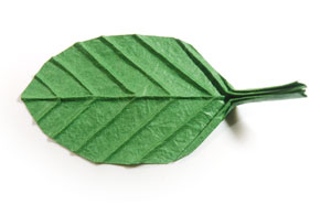 How to make a single origami leaf page 1 single origami leaf mightylinksfo