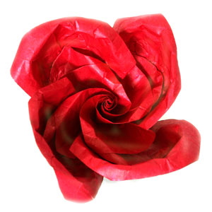 lovely origami rose  paper flower